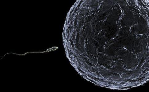 精子的质量标准是什么 衡量精子质量的标准有哪些 如何提高精子质量标准