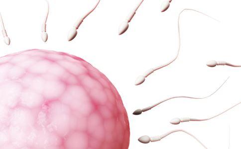 有10种方法可以提高精子质量。