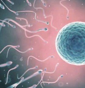 男人如何让精子保持活力 精子活力的重要性 如何预防精子活力低下