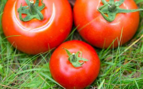 西红柿减肥法 西红柿减肥法怎么做 西红柿减肥