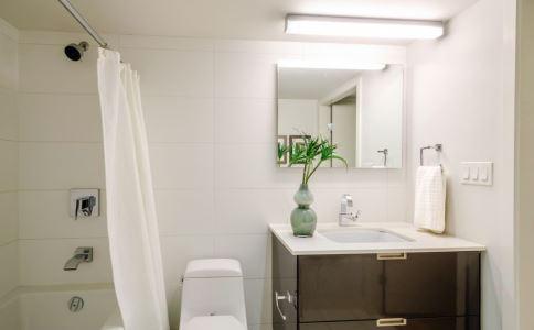 女人在卫生间不能做什么 卫生间可以放卫生间吗 在卫生间有什么禁忌
