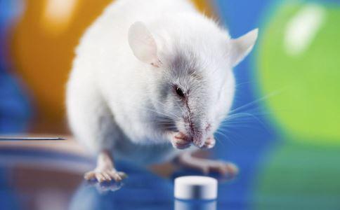 研究收明cancer自我毁灭新方法 cancer如何预防 cancer怎么预防