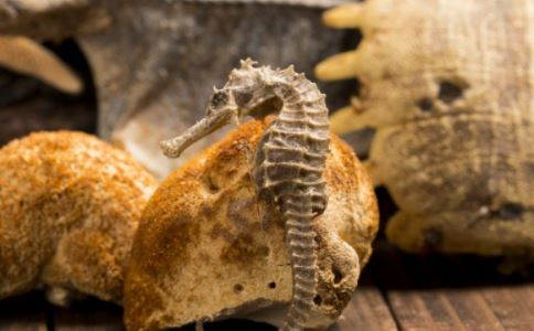 菌菇有什么好处 菌菇的好处有哪些 菌菇有什么功效