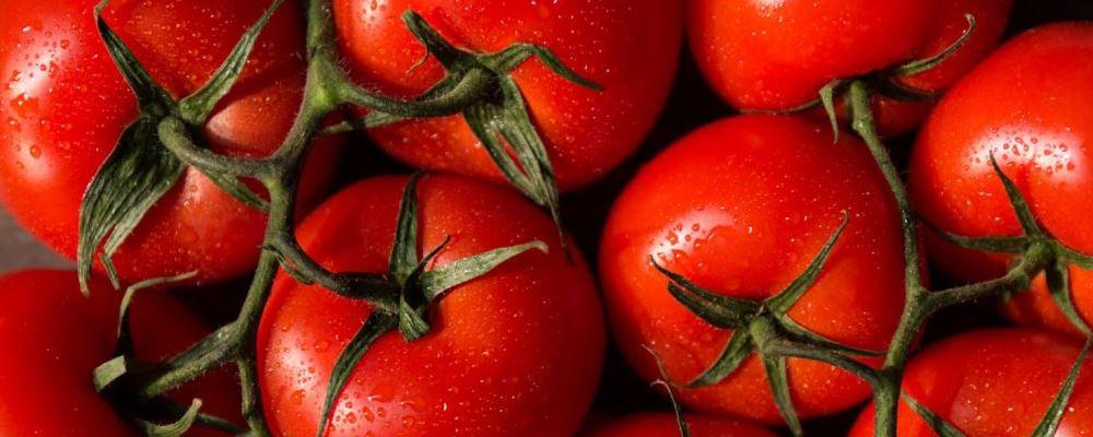 消暑解渴有什么方法 消暑解渴吃什么 消暑解渴蔬菜有哪些