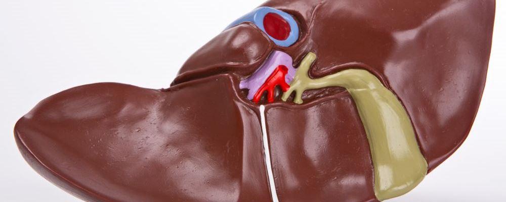什么是乙肝大三阳免疫耐受期 如何理解乙肝大三阳免疫耐受期 乙肝大三阳免疫耐受期是什么