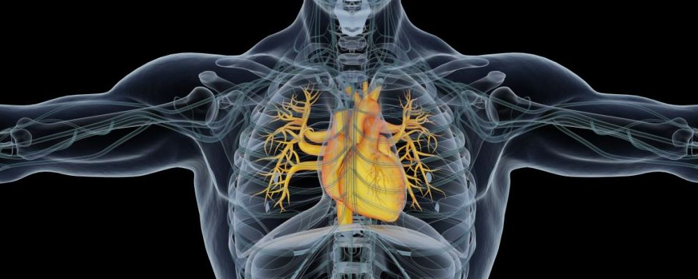 是什么引发了心梗 导致心梗的原因有哪些 怎样预防心梗