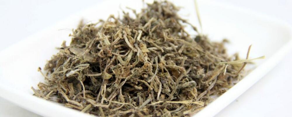 垂盆草的作用和功能