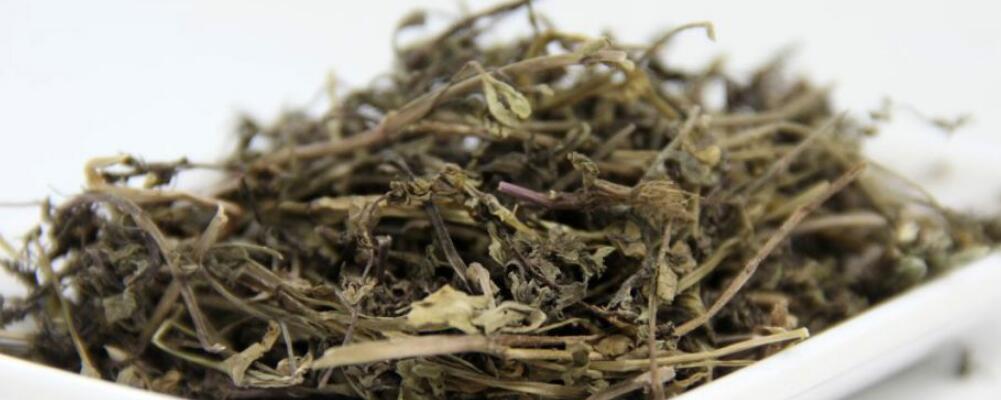 肾茶的功效 肾茶的作用 肾茶