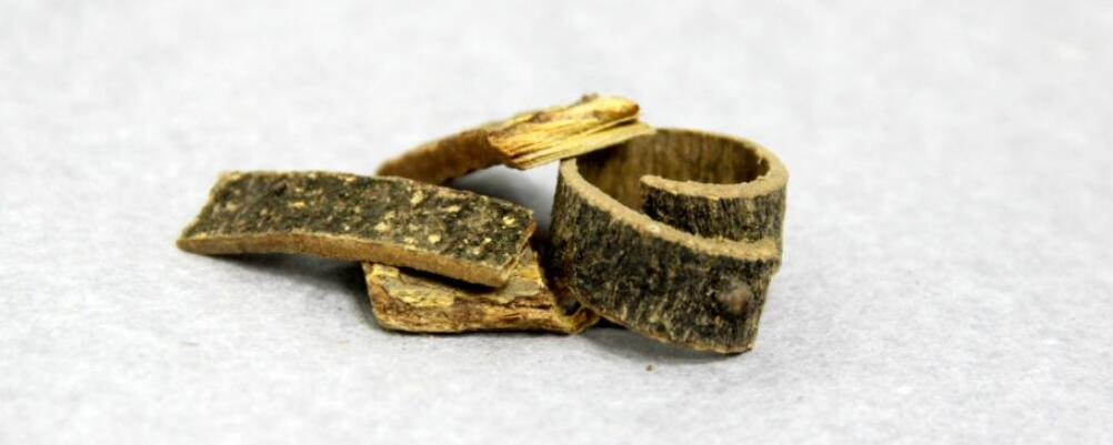 海桐皮的功效 海桐皮的作用 海桐皮