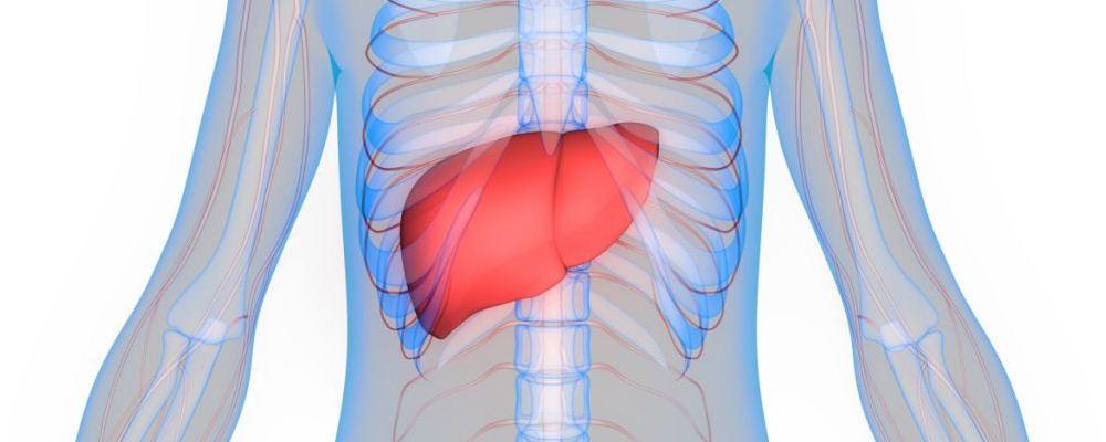 男性脂肪肝 男性脂肪肝预防 男性脂肪肝危害