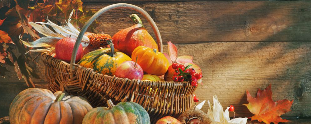 秋天养生吃什么好 秋天养生的食物 秋天如何养生