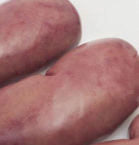 男性为什么会肾虚 怎么补肾 补肾吃什么好