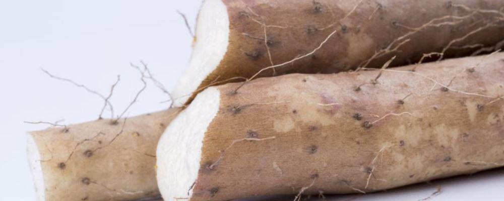 如何养肝 养肝有什么方法 养肝吃什么好