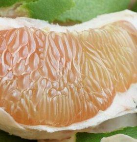 秋季养肺吃什么 白露如何养生 适合白露养生吃的食物有哪些