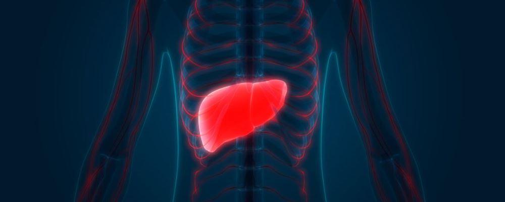 肝硬化可分为几类 肝硬化病型分类 肝硬化的病因