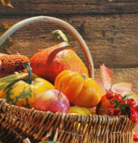 秋季困乏该怎么办 秋季吃什么比较好 秋季如何养生