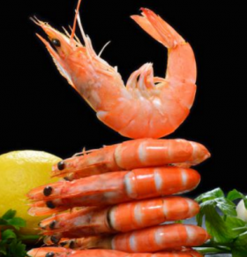死了的海鲜能吃吗 煮熟的海鲜能过夜吗 吃海鲜的禁忌是什么