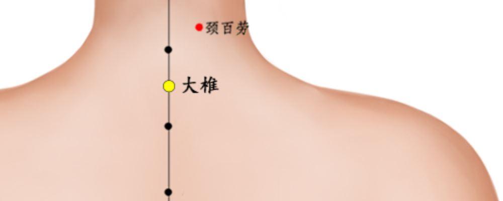 大椎穴位置图片