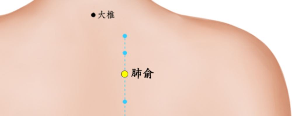 肺俞穴位的准确位置图 肺俞穴位图 肺俞穴