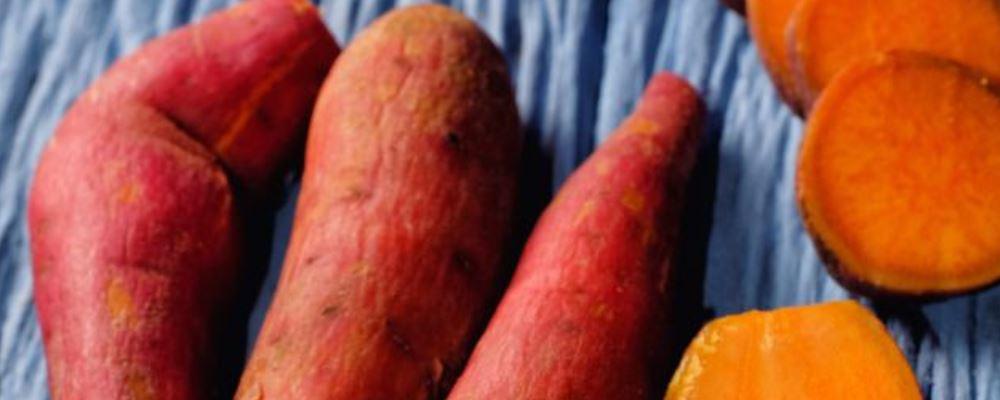 红薯有什么好处 怎么吃红薯 吃红薯要注意什么