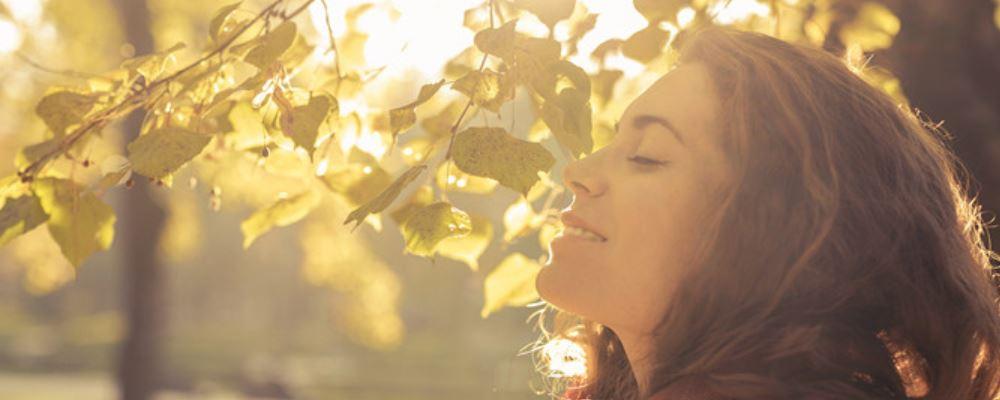 秋季养生吃什么好 秋季养生吃什么食物好 秋季应该吃什么养生