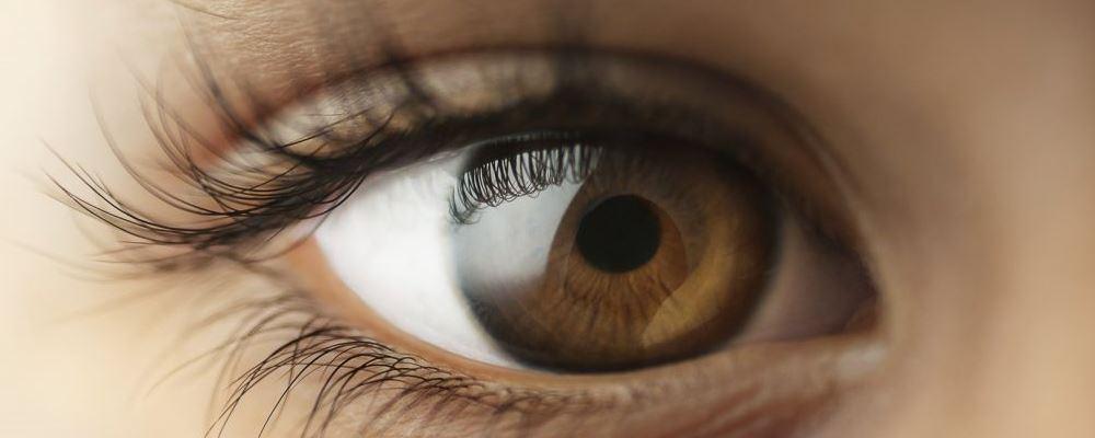 少年近视2400度 怎么预防近视 高度近视的危害有哪些