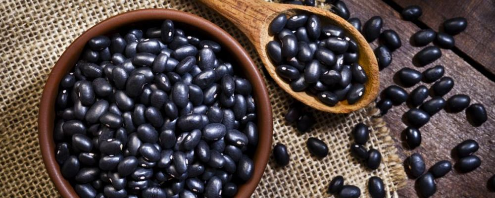 黑豆补肾吗 黑豆有哪些好处 黑豆功效与作用