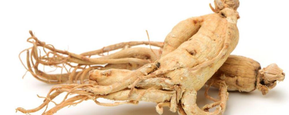 秋季老人如何饮食养生 学会这几招让老人身体安康