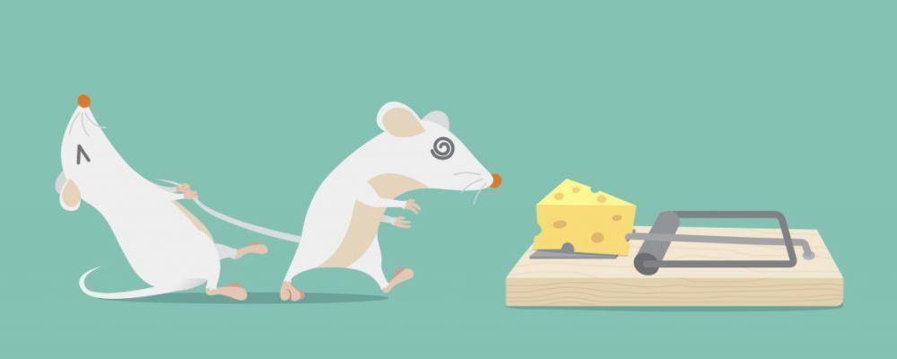 北京发布鼠疫患者最新病情 鼠疫靠什么传播途径 患上鼠疫有什么症状
