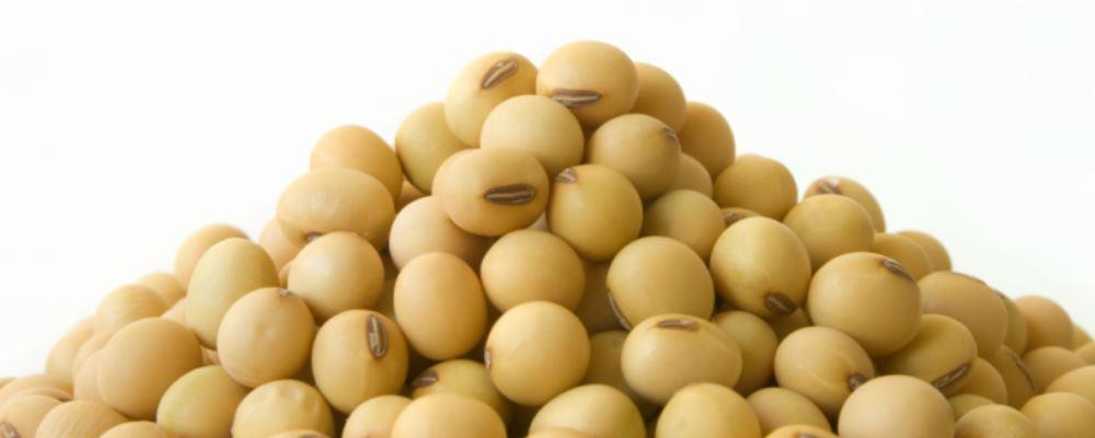 女性应该如何保持青春,记得多吃大豆