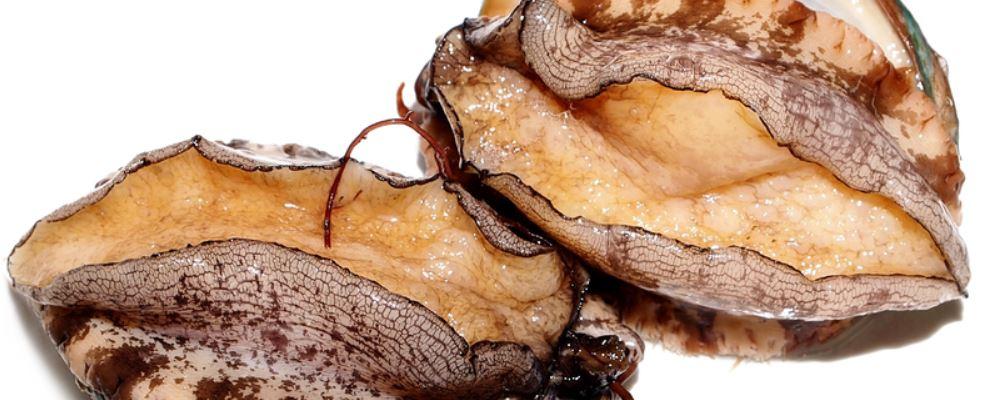 鲍鱼卖出白菜价 鲍鱼的营养价值 吃鲍鱼的注意事项