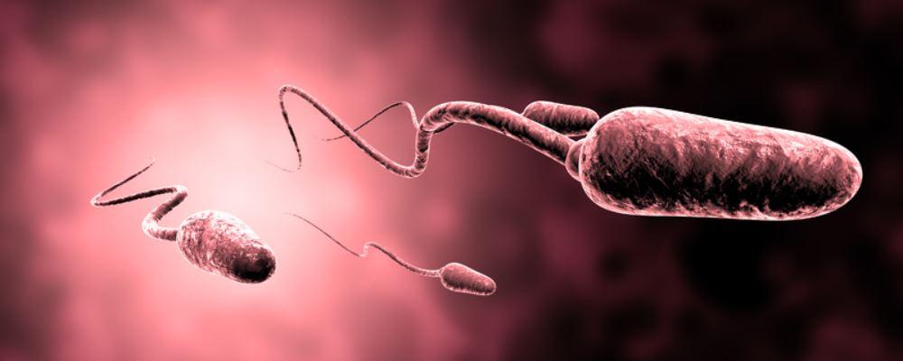 男性精子少怎么回事 男性精子少原因