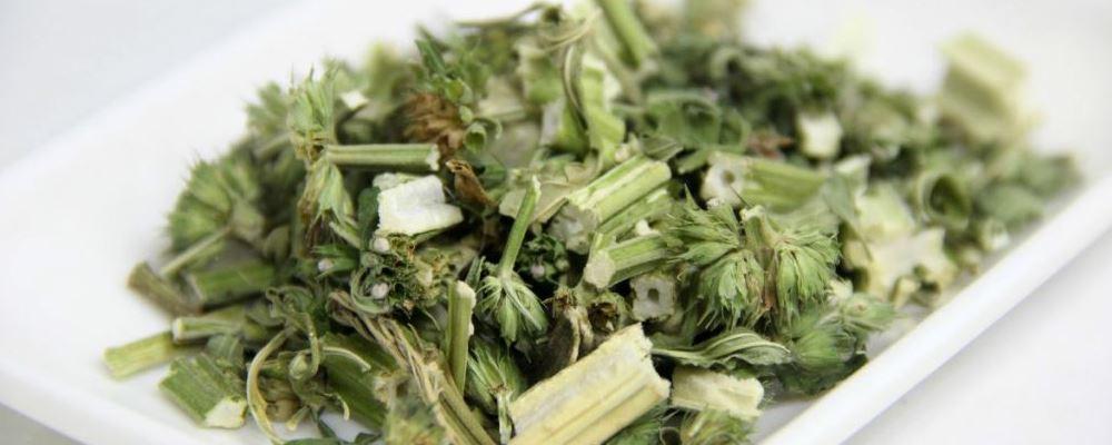 益母草的副作用 益母草的功效 益母草用多了的坏处