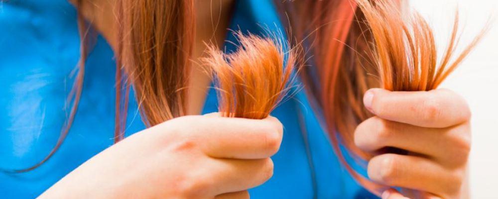 头发干枯的原因是什么 头发干枯怎么护理 头发干枯毛躁怎么办