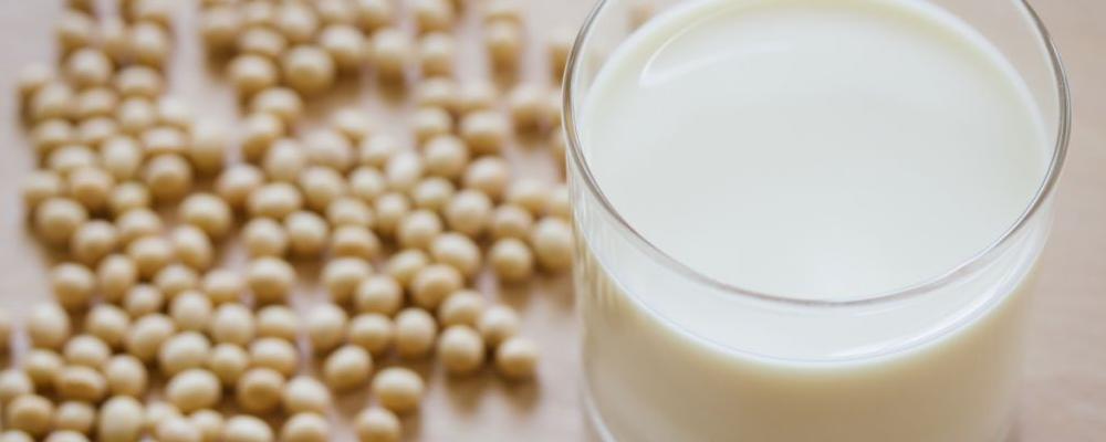 怀孕可以喝豆浆吗 怀孕的豆浆 怀孕喝豆浆有哪些好处