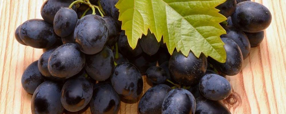 西班牙跨年要吃12颗葡萄 葡萄的营养价值 吃葡萄有哪些好处