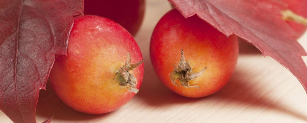 孕妇吃水果要注意什么 孕妇吃什么水果好 孕妇吃水果有哪些禁忌