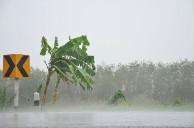 全国多地遭暴雨袭击