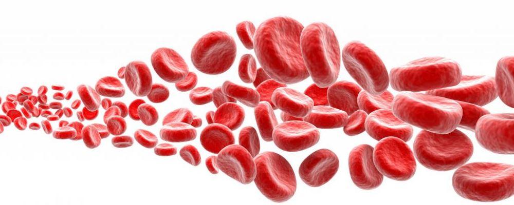 新冠肺炎复阳 什么是复阳 为什么会出现复阳的现象