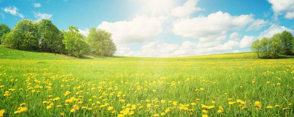 春捂到底要捂什么 春季的养生技巧 春季养生注意事项