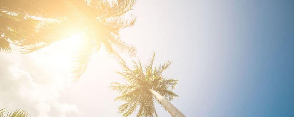 夏季如何去除体内湿热 去除体内湿热的方法 怎么去除体内湿热
