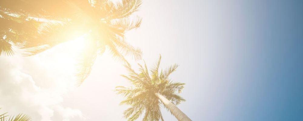 大暑节气该如何保健 大暑节气保健方法 夏季如何保健