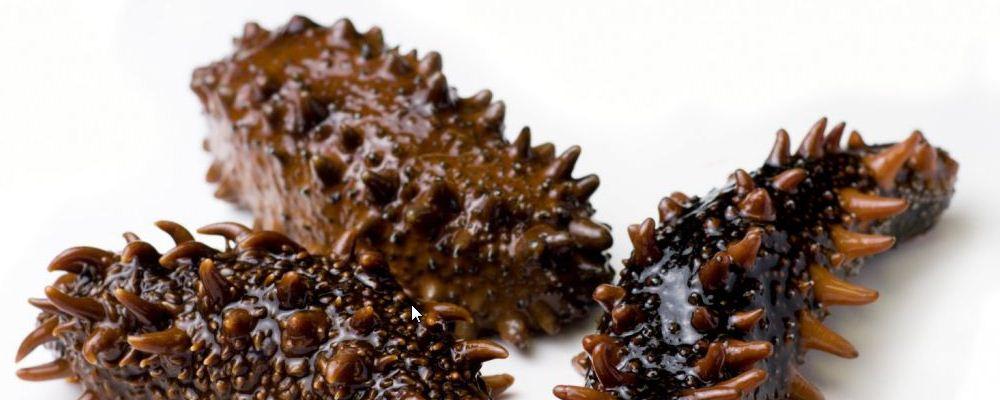 海参有什么营养 海参养殖放敌敌畏 补肾气吃海参有用吗