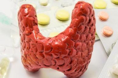 甲状腺_甲状腺的症状_甲状腺的治疗