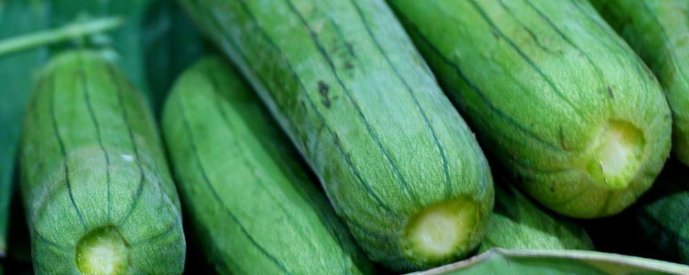 夏天吃丝瓜的好吃 丝瓜的美味做法 丝瓜好吃的做法