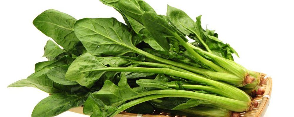 吃什么可以帮助减肥 哪些食物让人越吃越胖 什么蔬菜帮助减肥