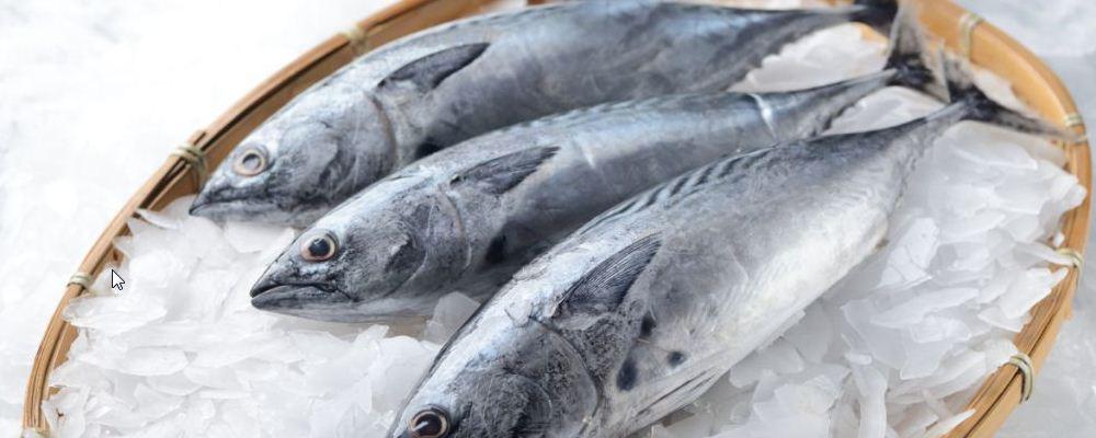 减肥期间有哪些东西不能吃 减肥的时候可以吃海鱼吗 减肥期间如何饮食容易瘦