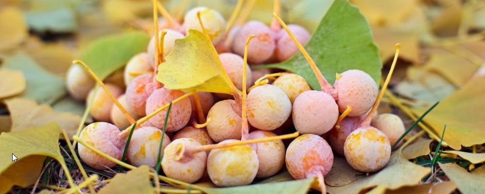 深秋季节养生有哪些关键点 深秋季节吃什么好 深秋如何防湿
