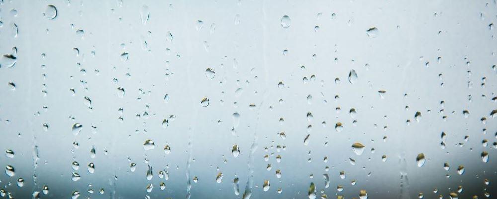 雨水节气该如何保暖 身体雨水节气的保健禁忌有哪些 雨水节气吃什么食物好