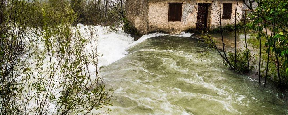 水灾过后如何防范瘟疫 水灾之后要预防哪些疾病 自然疫源性疾病如何预防